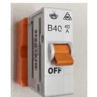 40amp plug in mcb